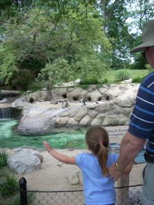John and Maddie look at penguins at the zoo. At home they looked at a book of animals.