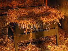 Jesus' manger may have been made of wood or carved into a cave wall.